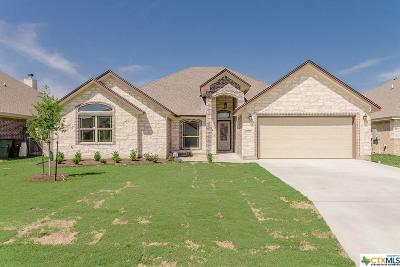 Bell County Single Family Home For Sale: 2511 Paisley Drive