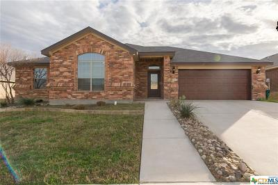 Killeen Single Family Home For Sale: 2502 Traditions Drive