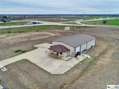 Belton Commercial For Sale: 334 Goodway
