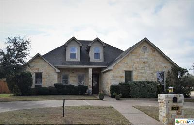 McLennan County Single Family Home For Sale: 965 Lands End Cove