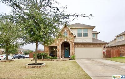 Buda Single Family Home For Sale: 167 Still Hollow Creek