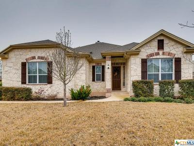 Georgetown Single Family Home For Sale: 207 Las Colinas