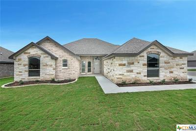 Temple TX Single Family Home For Sale: $236,900