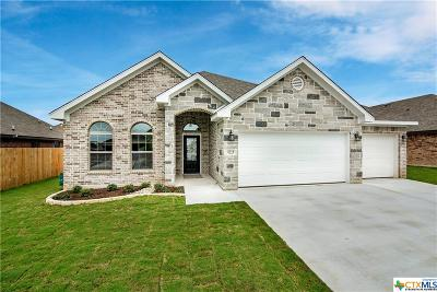 Temple TX Single Family Home For Sale: $243,500