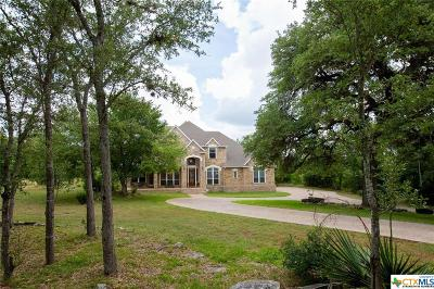 Hays County Single Family Home For Sale: 155 Zinnia