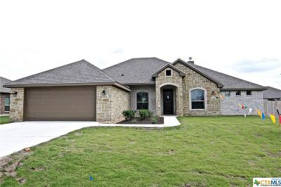 Bell County Single Family Home For Sale: 3810 Wicker Drive