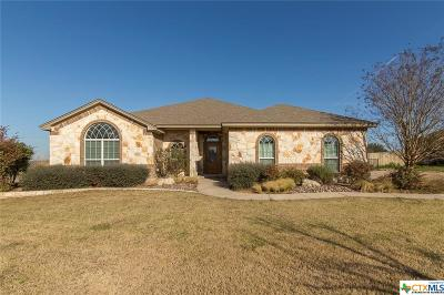 Salado Single Family Home For Sale: 3185 Hester Way