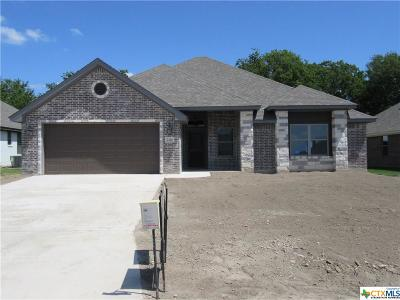 Bell County Single Family Home For Sale: 7314 Golden Heart Drive