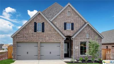 San Antonio Single Family Home For Sale: 14734 Running Wolf