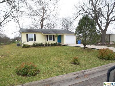 Seguin Single Family Home For Sale: 2412 Breustedt Street
