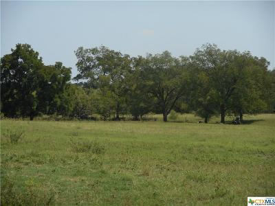 Lampasas Residential Lots & Land For Sale: 8807 W Fm 580