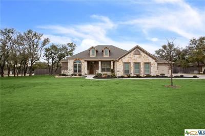 Belton Single Family Home For Sale: 52 Richland Drive