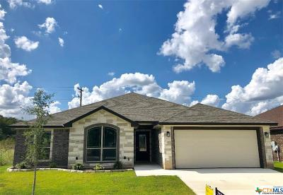 Belton Single Family Home For Sale: 408 Damascus