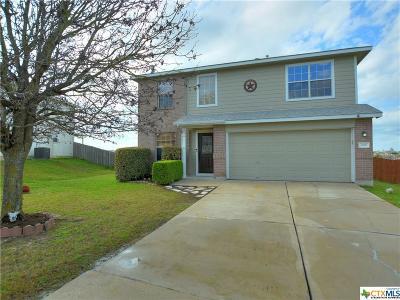 Kyle Single Family Home For Sale: 233 Prairie Verbena