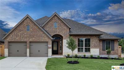 San Antonio Single Family Home For Sale: 2034 Wilby Lane