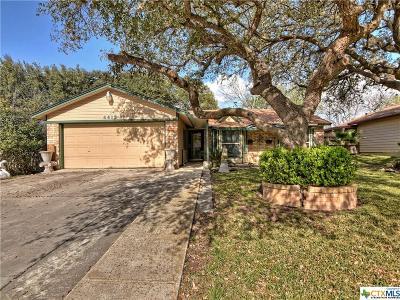San Antonio Single Family Home For Sale: 4419 Briardale