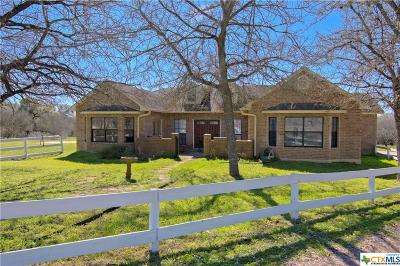Guadalupe County Single Family Home For Sale: 1520 Hoffman Road