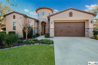San Antonio Single Family Home For Sale: 22610 Viajes