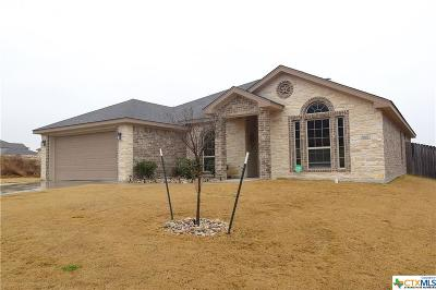 Killeen Single Family Home For Sale: 3801 Flat Rock Mountain Drive