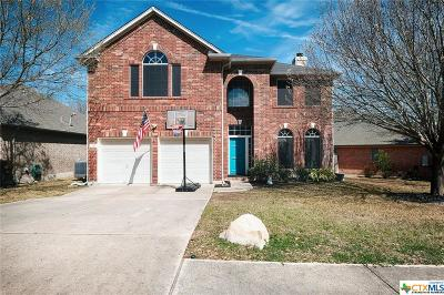 Round Rock Single Family Home For Sale: 2212 Shark Loop