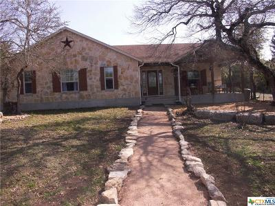 Wimberley Single Family Home For Sale: 400 Fischer Trail