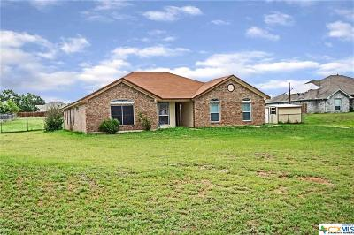 Kempner Single Family Home For Sale: 970 County Road 3350