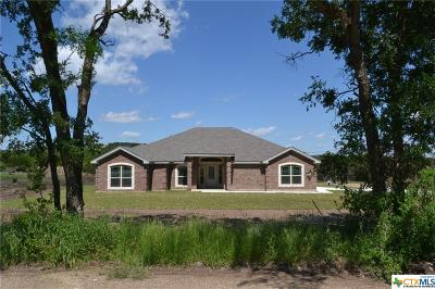 Kempner Single Family Home For Sale: 252 County Road 4830
