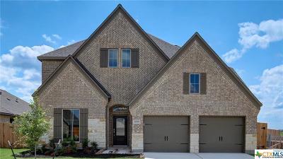 Seguin Single Family Home For Sale: 3000 Grove Terrace