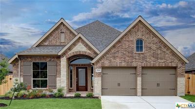 Seguin Single Family Home For Sale: 2980 Grove Terrace