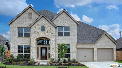 Seguin Single Family Home For Sale: 2977 High Meadow Street