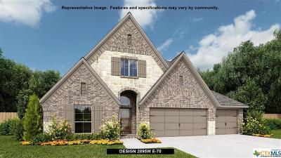 San Antonio Single Family Home For Sale: 406 Ricadonna