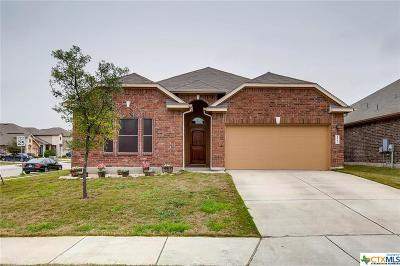 Cibolo Single Family Home For Sale: 272 Albarella