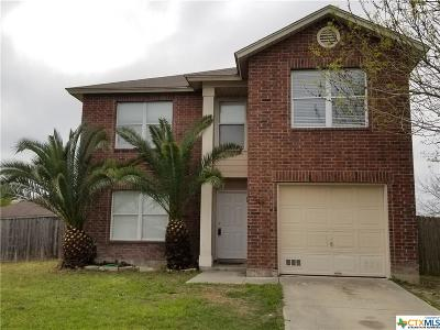 Seguin Single Family Home For Sale: 3418 Old Spanish Trail