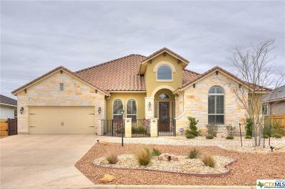 New Braunfels Single Family Home For Sale: 2442 Kookaburra Drive