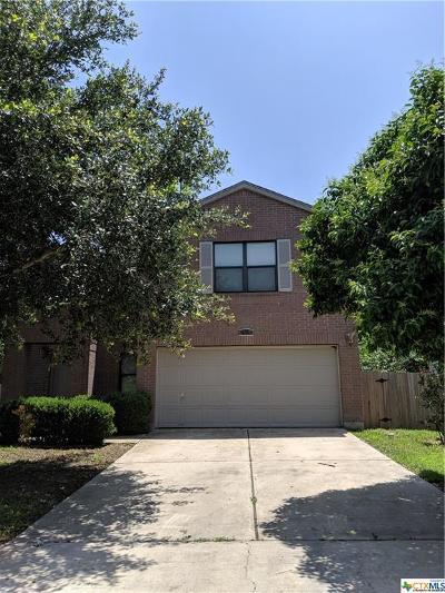 Kyle Single Family Home For Sale: 691 Abundance