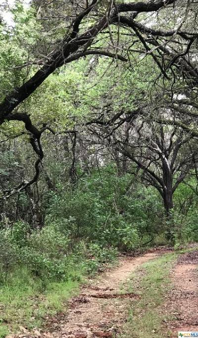 New Braunfels Residential Lots & Land For Sale: River
