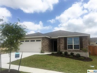 San Marcos Single Family Home For Sale: 113 Cypress Hills Road