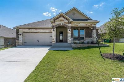 Belton Single Family Home For Sale: 3118 Trinity Drive