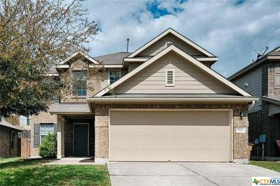 Austin Single Family Home For Sale: 5940 Silver Screen