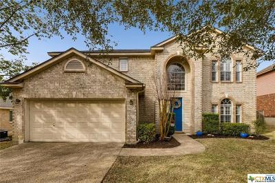 San Antonio Single Family Home For Sale: 19627 Camino