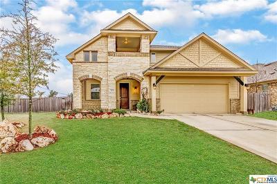 Leander Single Family Home For Sale: 313 Landing Lane