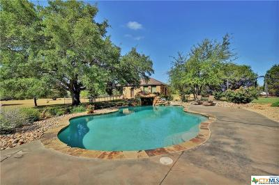 Temple, Belton, Salado, Troy Single Family Home For Sale: 1387 Hidden Springs