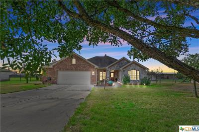 Hutto Single Family Home For Sale: 556 Will Smith