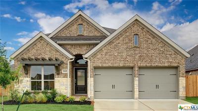 Seguin Single Family Home For Sale: 2969 Grove Terrace