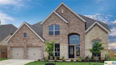 Seguin Single Family Home For Sale: 2005 Creek Ridge Street