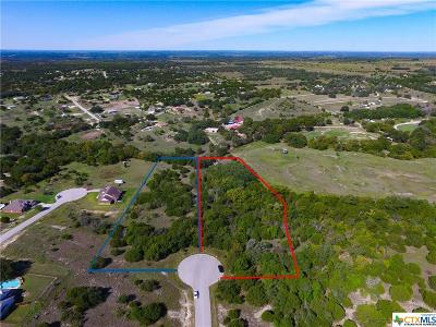 Kempner Residential Lots & Land For Sale: 191 County Road 3373