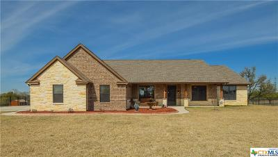 Killeen Single Family Home For Sale: 672 Magnolia