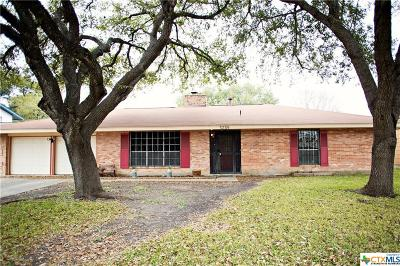 San Antonio Single Family Home For Sale: 5259 Prince Valiant