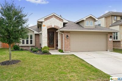 San Marcos TX Single Family Home For Sale: $310,000