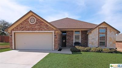 Harker Heights Single Family Home For Sale: 2523 Boxwood Drive